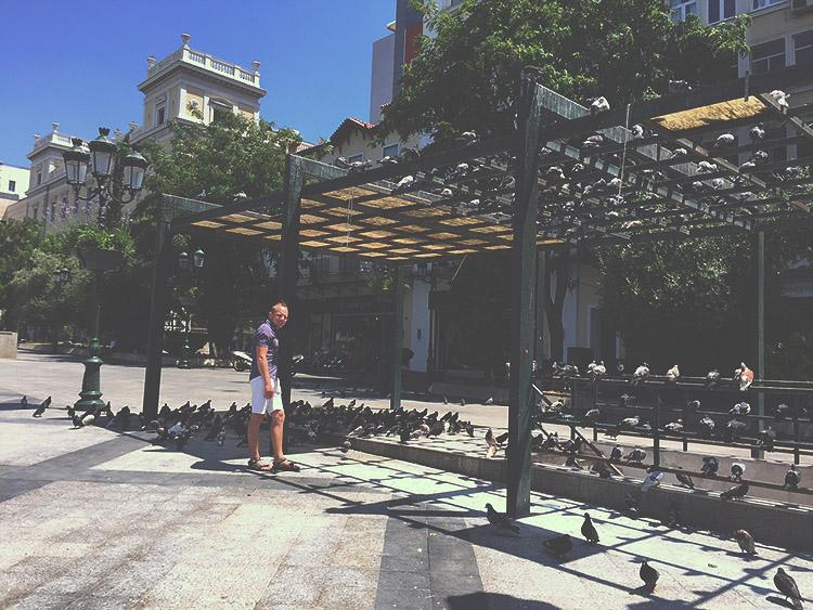 Holubi v Akropoli