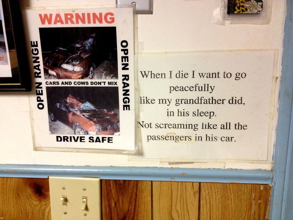 """""""Až umřu, chci odejít v míru jako ve spánku můj dědeček. Ne v křiku jako ti, co jeli v jeho autě."""""""